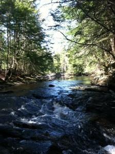 Quiet stream